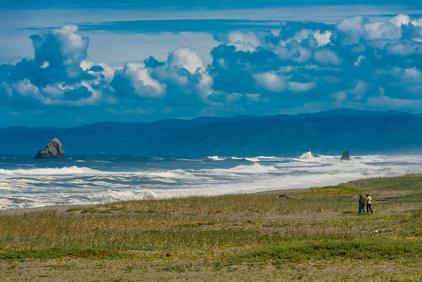 Tremendous surf hitting the beach at Redwood National Park, northern California USA.