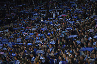 27th October 2019; Dragao Stadium, Porto, Portugal; Portuguese Championship 2019/2020, FC Porto versus Famalicao; Supporters of FC Porto