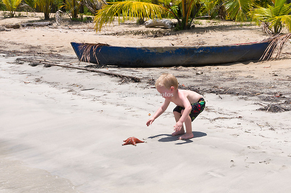 A two year old boy discovers a Cushion Sea Star (Oreaster reticulatus), a common starfish on Star Beach, near Boca del Drago, Colon Island, Panama