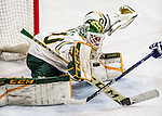 2017-02-10 NCAA: UNH at Vermont Men's Hockey