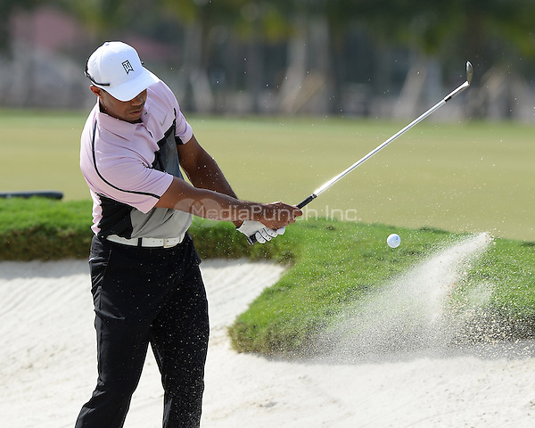 DORAL, FL - MARCH 05: Tiger Woods participates in the practice round of the World Golf Championships-Cadillac Championship at Trump National Doral on March 5, 2014 in Doral, Florida. Credit: mpi04/MediaPunch