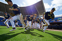Michigan Wolverines players, including Evan Hill (21), Carmen Benedetti (43), Matt Ramsey (19), Cody Bruder (3), and Jake Bivens (18), take the field to start the second game of a doubleheader against the Canisius College Golden Griffins on February 20, 2016 at Tradition Field in St. Lucie, Florida.  Michigan defeated Canisius 3-0.  (Mike Janes/Four Seam Images)
