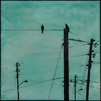 Turquoise sky with silhouette of talking crows on telephone lines.
