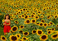 Charlotte Field of Dreams annual sunflower field photoshoot for cancer survivors
