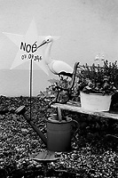 Switzerland. Canton Schwyz. Brunnen. In a private house's garden, a star and a stork to celebrate the birth of Noé. A wooden bench, a watering can and a flowers pot. A heart with two birds. 8.11.2017 © 2017 Didier Ruef