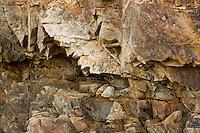 Bass rocks detail, Cape Ann, MA