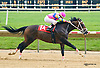 Wonderful Union winning at Delaware Park on 6/9/15