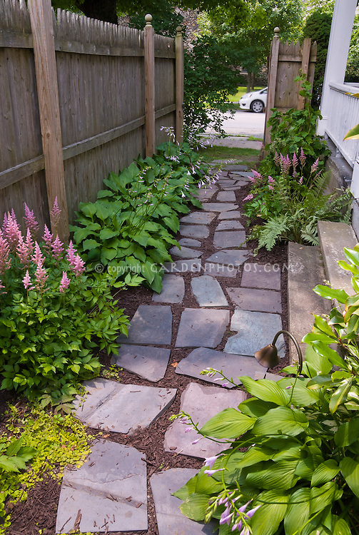 Side walkway, astilnbe, hosta, shade garden, flagstone walkway, side of house steps
