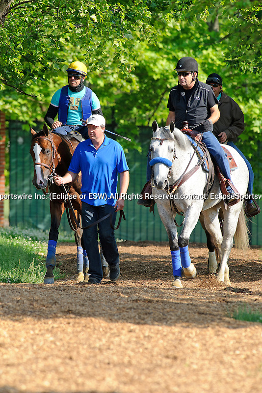 Baltimore, MD- May 17: 137th Preakness contender Bodemeister during morning work outs at Pimlico Race Course in Baltimore, MD on 05/17/12. Trained by Bob Baffert (Ryan Lasek/ Eclipse Sportswire)