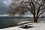 Centennial trail table in the snow
