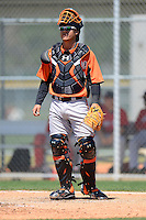 Baltimore Orioles catcher Geremias Gil (74) during a minor league Spring Training game against the Boston Red Sox at Buck O'Neil Complex on March 25, 2013 in Sarasota, Florida.  (Mike Janes/Four Seam Images)