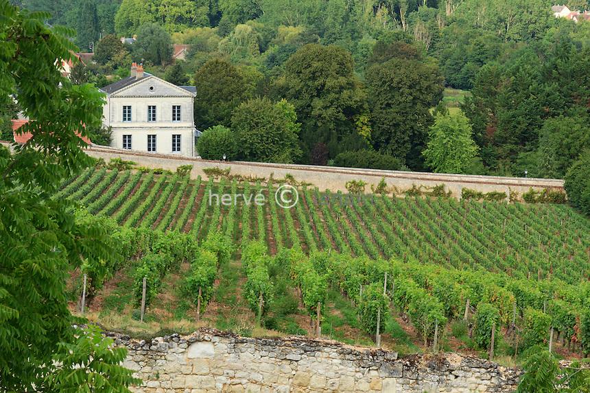 France, Indre (36), Valençay et son vignoble (AOC)  // France, Indre, Valençay and his vineyard (AOC)