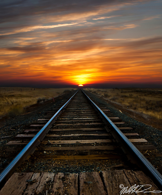 These romote train tracks, that stretch out toward the rising sun, seem to be leading off to something different, something better, to a final objective.  To me they seem to leading me home.