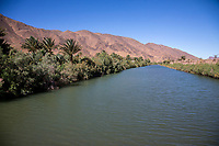 Draa River Valley, Morocco.  River Draa Scene.
