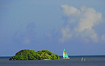 a catamaran with colorful striped sails goes past a small mangrove island on the oceanside of Tavernier, Florida Keys