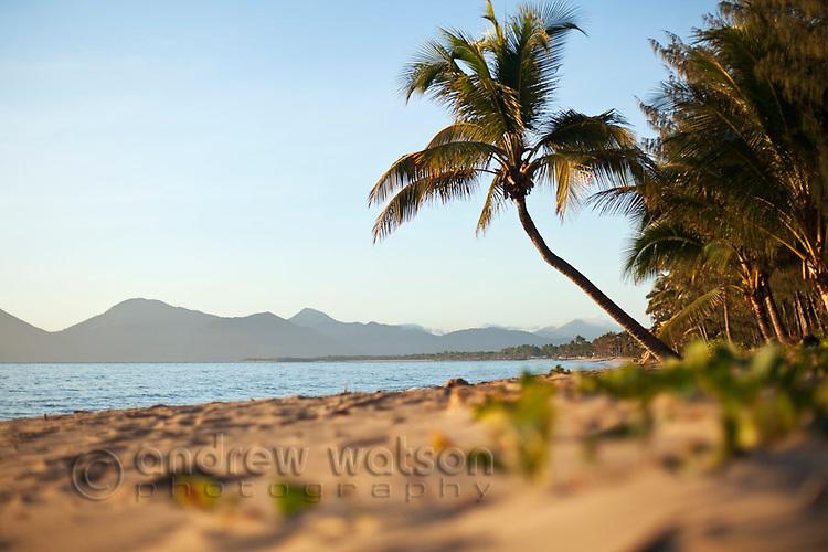 View along Holloways Beach at dawn.  Cairns, Queensland, Australia