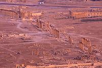 SIRIA - sito di Palmira(Tadmor)  veduta generale