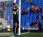 Diego Lopez, RCD Espanyol 0 v 3 Sevilla FC, Jornada 20, RCDE Stadium, La Liga Santander 2017/2018. Barcelona. Photo Martin Seras Lima
