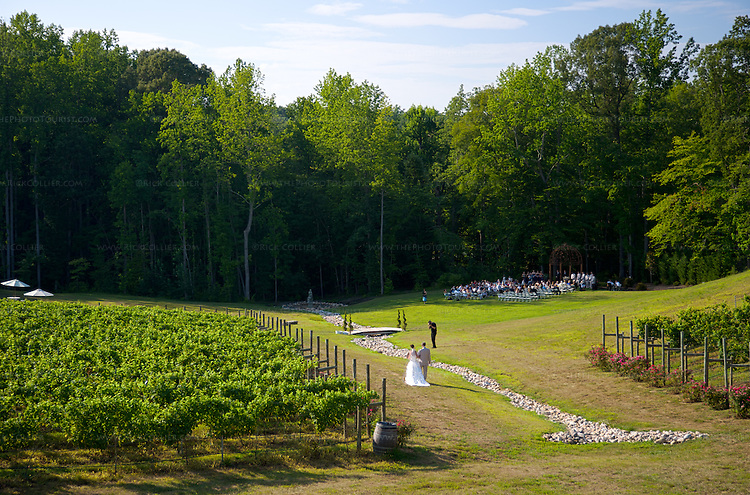 The bride proceeds between rows of wine grape vines, on the way to take her vows.  gardens and vineyards of Potomac Point Vineyard and Winery (Stafford, VA) include attractive seating areas, a pavilion (not seen in this shot), and even a glade that seems ideal for a wedding.