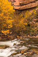 Zion National Park Utah During Fall
