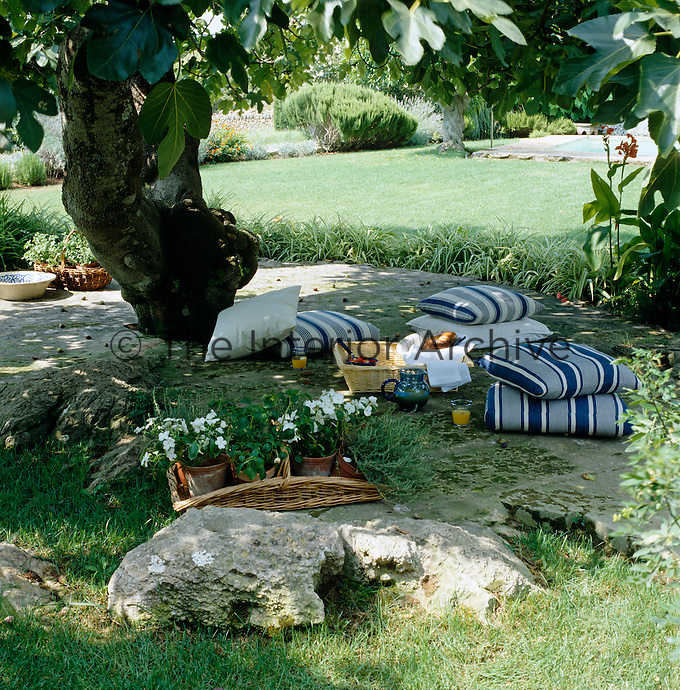 Striped cushions are scattered in the shade of a fig tree beside a breakfast picnic basket