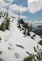 Hiking a ridge above Kachess Lake, Washington.