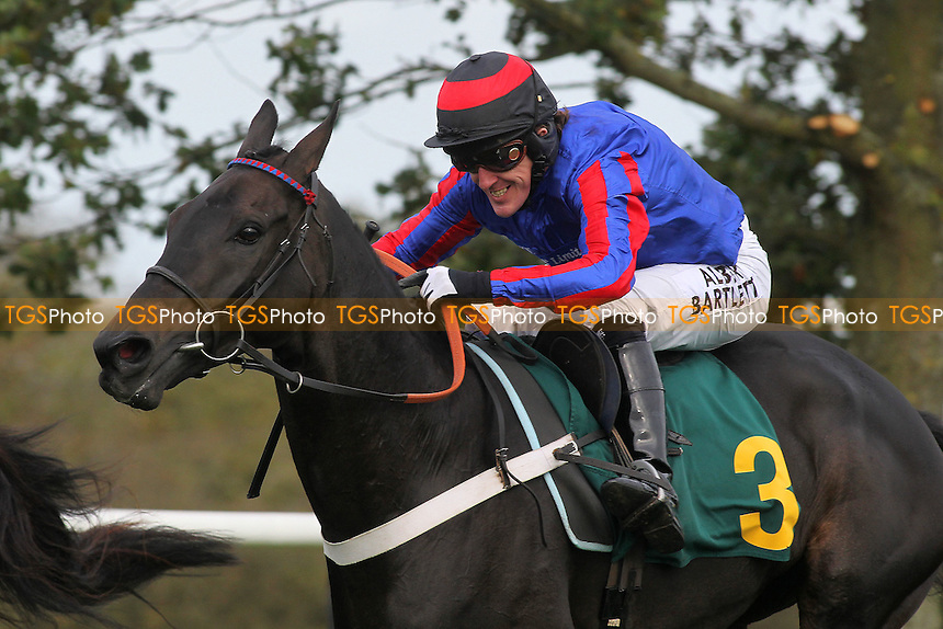 Bear's Affair ridden by A P McCoy in jumping action during the Fakenham Novices Chase - National Hunt Horse Racing at Fakenham Racecourse, Norfolk - 25/10/13 - MANDATORY CREDIT: Gavin Ellis/TGSPHOTO - Self billing applies where appropriate - 0845 094 6026 - contact@tgsphoto.co.uk - NO UNPAID USE
