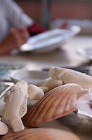 Europe/France/Provence-ALpes-Côte d'Azur/13/Bouches-du-Rhône/Marseille: Décoration des assiettes avec des motifs marins à la faïencerie Figueres