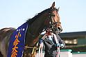 Horse Racing : Kokura Daishoten 2017