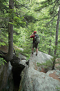 A hiker explores the Bear Pit on the side of Howker Ridge Trail on during the summer months in the White Mountains, New Hampshire USA