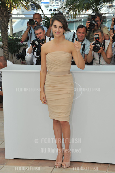 """Penelope Cruz at photocall for her new movie """"Broken Embraces"""" which is in competition at the 62nd Festival de Cannes..May 19, 2009  Cannes, France.Picture: Paul Smith / Featureflash"""