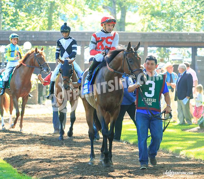 Money Multiplier before The Kent Stakes (gr 3) at Delaware Park on 7/18/15