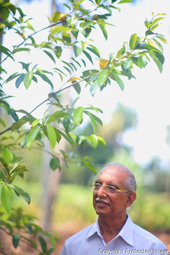 05 Dec 2012, Thrissur,INDIA :.Ashtavaidyan  E.T. Divakaran Mooss at the garden of the Aatma Ayurvedic Centre...(Subhash Sharma for The L'express) Ayurveda