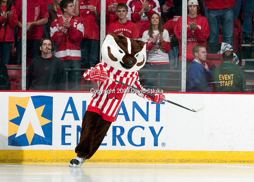 October 16, 2009: Wisconsin Badgers masoct Bucky Badger during an NCAA hockey game against the Colorado College Tigers at the Kohl Center on October 16, 2009 in Madison, Wisconsin. The Tigers won 3-2. (Photo by David Stluka)