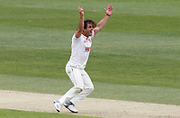 Ryan ten Doeschate of Essex appeals for the wicket of Heino Kuhn during Kent CCC vs Essex CCC, Friendly Match Cricket at The Spitfire Ground on 27th July 2020
