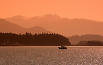 Alaska, Juneau: Wildlife viewing and scenery on trip on Lynn Canal aboard the Admiralty Wind from Auke Bay..Photo #: alaska10189 .Photo copyright Lee Foster, 510/549-2202, lee@fostertravel.com, www.fostertravel.com..