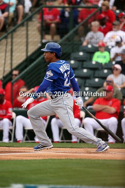 Raul Adalberto Mondesi - Kansas City Royals 2016 spring training (Bill Mitchell)