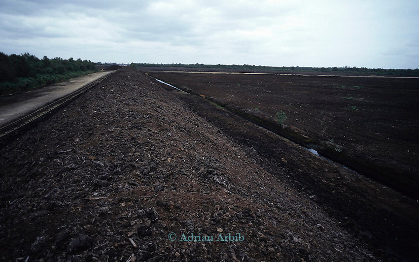Extracted peat from Thorne Moors.  Scotts continue to drain and extract peat from this fragile ecosystem despite massive protest locally and nationally.