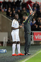 Bafetimbi Gomis of Swansea prays before coming into the game as a substitute during the Barclays Premier League match between Swansea City and Crystal Palace at the Liberty Stadium, Swansea on February 06 2016