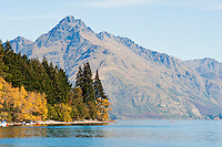 A view of the stunning Lake Wakatipu with the Remarkables mountain range as a back drop at Queenstown, South Island, New Zealand. Lake Wakatipu is the third largest lake in New Zealand and is also one of the most beautiful. The combination of The Remarkables Mountains seen in the background and Lake Wakatipu make Queenstown an incredible place to visit, especially as the leaves turn a fantastic orange colour in autumn.