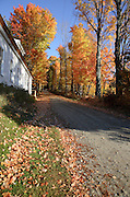 Autumn colors along a dirt road in Antrim, New Hampshire USA