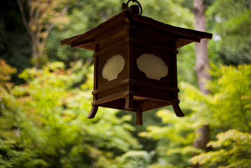 A lantern hangs against green foliage at Kotoin Temple, a part of the Daitokuji Temple Complex, Kyoto.