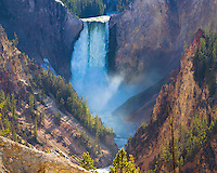 Yellowstone National Park, WY <br /> Morning sun on Lower Falls on the Yellowstone River, from Artist Point, Grand Canyon of the Yellowstone river
