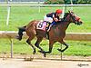 I'm Maxima winning at Delaware Park on 6/17/17