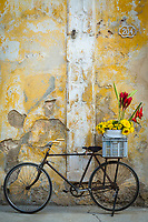 Cuba, Havana. Bicycle with flowers leaning against a decaying wall.