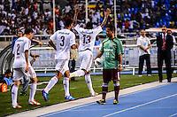 ATENCAO EDITOR: FOTO EMBARGADA PARA VEICULOS INTERNACIONAIS-RIO DE JANEIRO, RJ, 17 OUTUBRO 2012-CAMPEONATO BRASILEIRO-FLUMINENSE X GREMIO- Comemoracao do gol de Digao (n13) jogador do Fluminense durante a partida Fluminense x Gremio valida pela 31 rodada do Campeonato Brasileiro no Estadio Joao Havelange, Engenhao, neste domingo, 30 de setembro,na zona norte do Rio de Janeiro.(FOTO:MARCELO FONSECA/ BRAZIL PHOTO PRESS).
