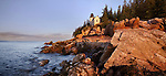The Bass Harbor Head Light Bathed In Morning Light, Acadia National Park, Maine