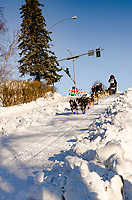 Cody Strathe  and team run past spectators and down the Cordova Street hill with an Iditarider in the<br /> basket and a handler during the Anchorage, Alaska ceremonial start on Saturday March 4th<br /> during the 2017 Iditarod race. Photo  @2017 by Kristie Lent/SchultzPhoto.com