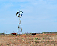 Windmill in pasture near Dumont, TX
