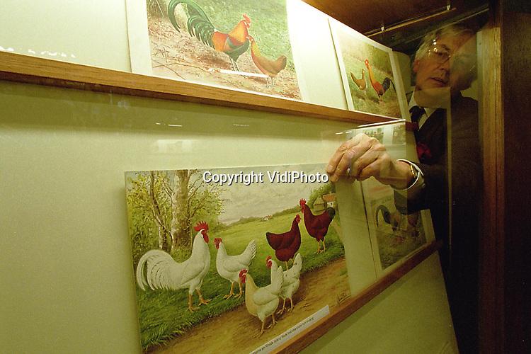 """Foto: VidiPhoto..BARNEVELD - In het Pluimveemuseum in Barneveld is donderdag de unieke schilderijen- en eieren-expositie """"Veren in Verf"""" geopend. Opmerkelijk is dat de kleurrijke schilderijen van oude kippenrassen dienen als voorbeeld om diezelfde soorten kippen weer opnieuw te fokken. Daarnaast zijn er zo'n 450 versierde eieren uit twaalf landen opgehangen. Deze collectie is door het .Barneveldse museum opgekocht. De expositie duurt tot en met 31 mei."""